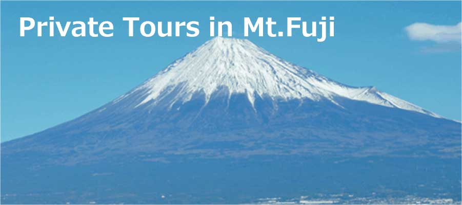 Private Tours in Mt. Fuji