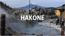 Private Tours in HAKONE