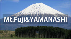 Private Tours in Mt.Fuji