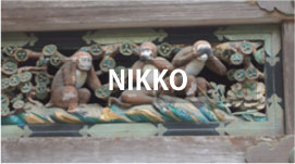 Private Tours in NIKKO