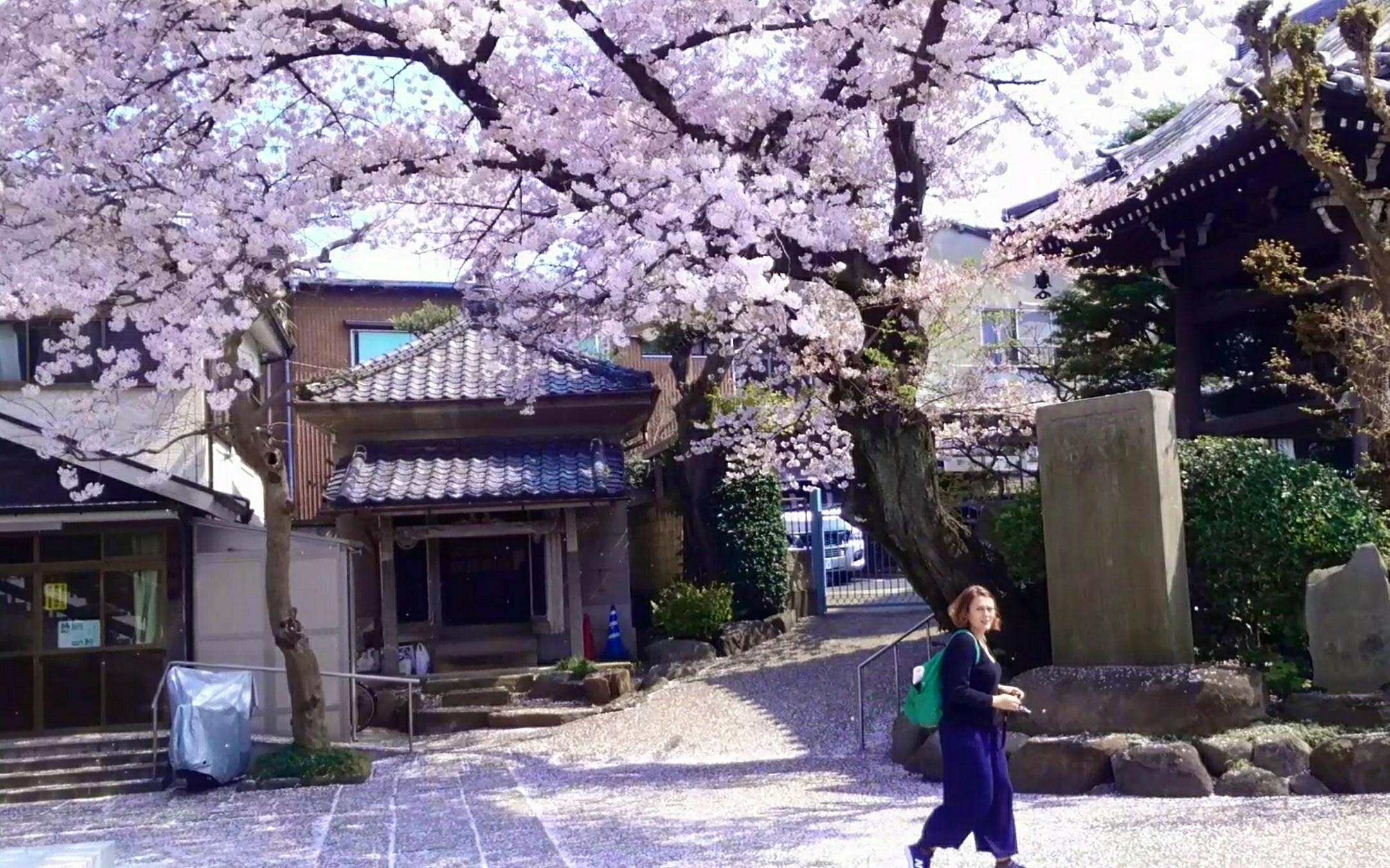 Zensho-an Temple