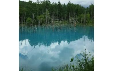 Biei Blue Pond in summer