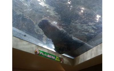 Asahiyama Zoo\\\'s Hippopotamus Museum