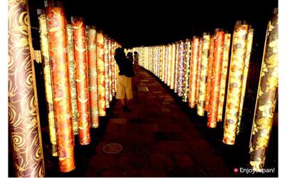 Komono illumination forest in Arashiyama station