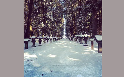 Kitaguchihongu-sengen shrine