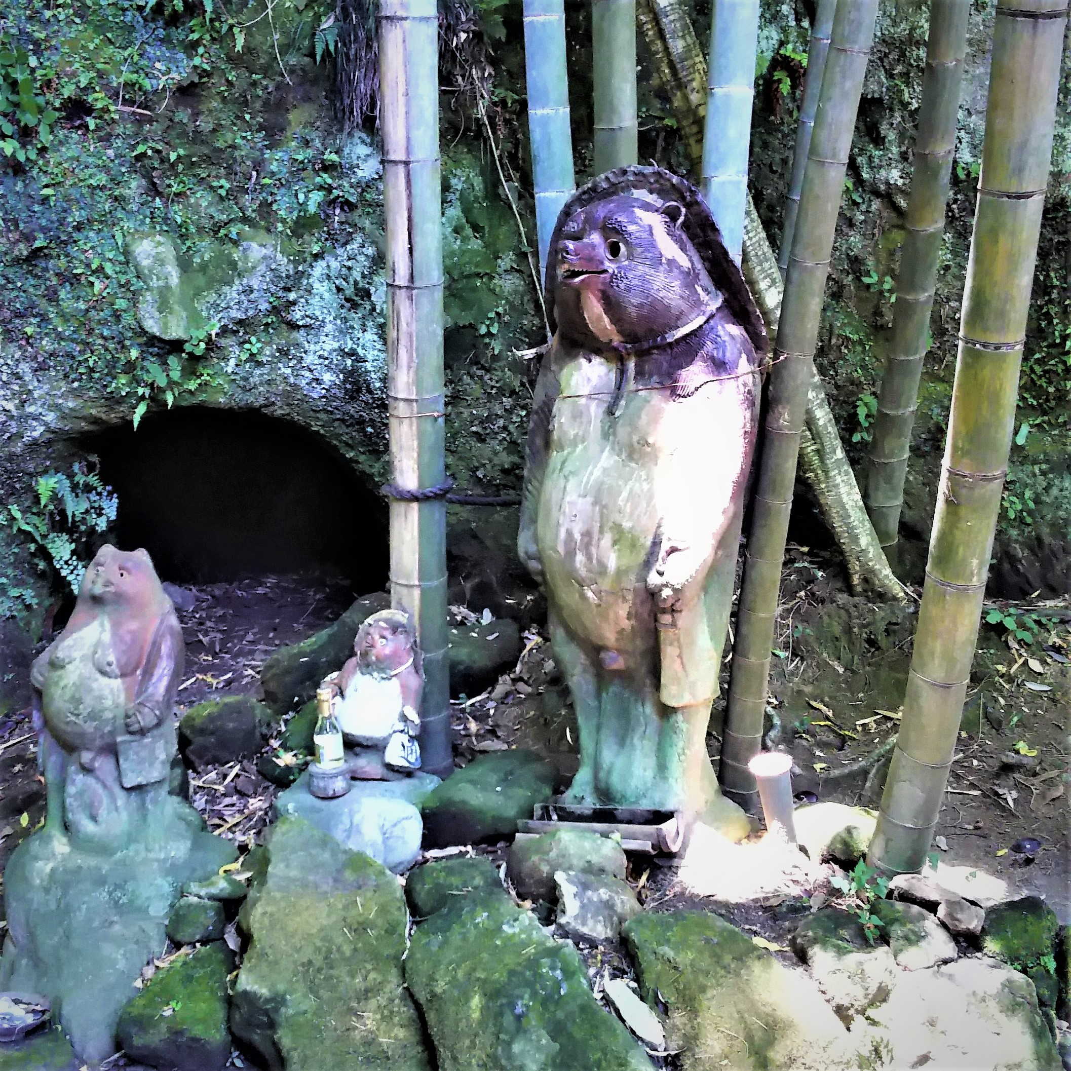 Jhochiji temple's  legendary tanuki the Japanese raccoon dog