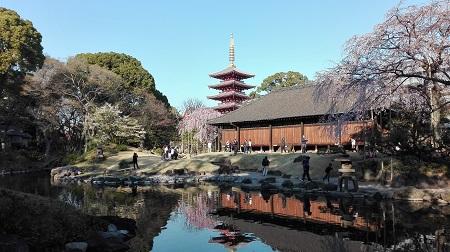 Sensoji Temple - Demboin Temple Garden