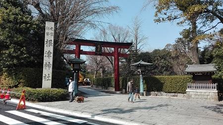 Nezu Shrine - Torii Gate