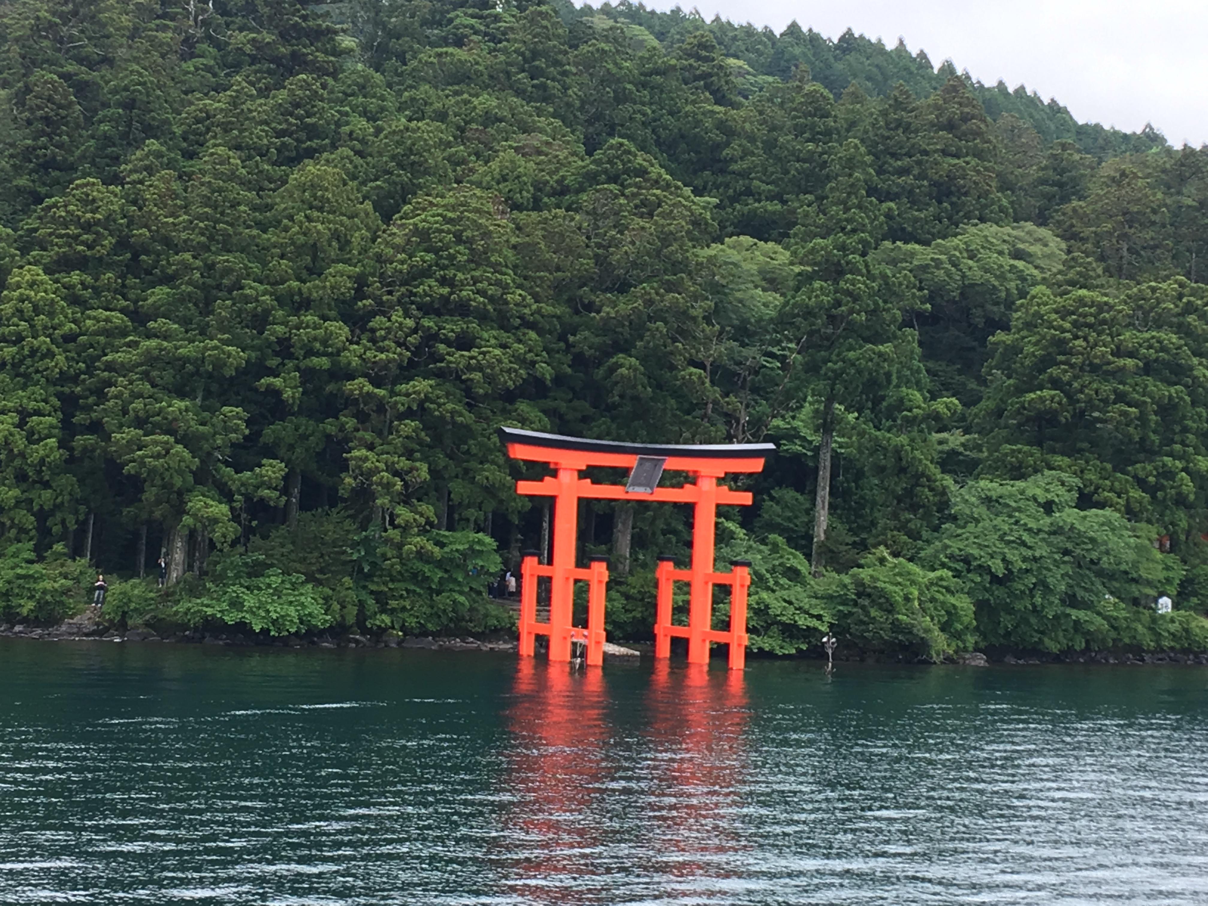 One More Activity : Hakone Shrine