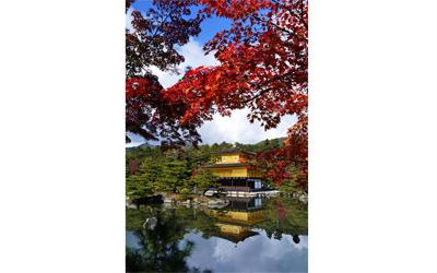 Golden pavilion in autumn